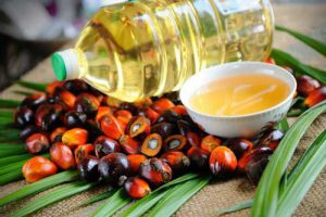 2018 04 18 lif 40196118 I1 300x200 - Date Palm oil (New and complete Information)