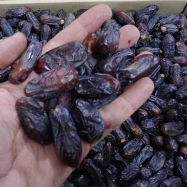 Dates Fruits Sale Offer