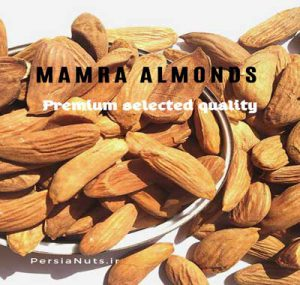 Mamra almonds 300x285 - Mamra badam(almond) benefits for brain