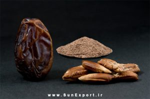 date seed 300x199 - Health benefits of Date seeds | Dates Seed Powder