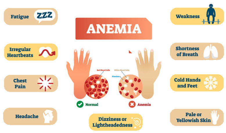 Symptoms - What's Anemia? Causes, Symptoms & Treatments