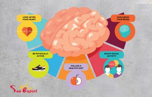 alzheimer Prevention 300x193 - Alzheimer's disease - Symptoms and Prevention