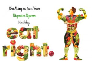 Digestive system 1 300x200 - The 8 Superfoods to Improve Digestion