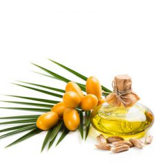 Dates Seed Oil